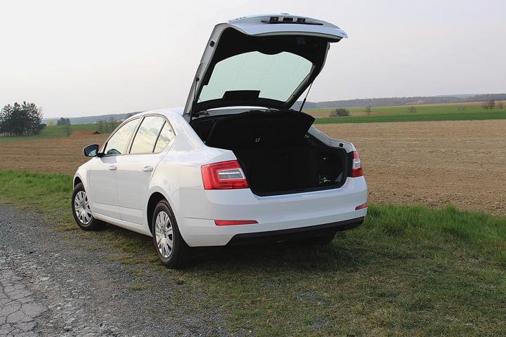 Auto Kofferraum Reinigung - Skoda